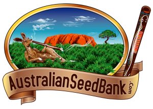 Australian seed bank reviews