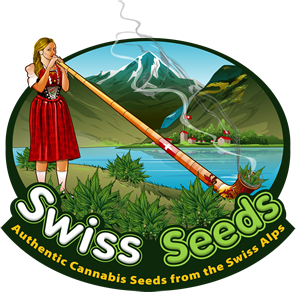 Swiss Seeds Reviews